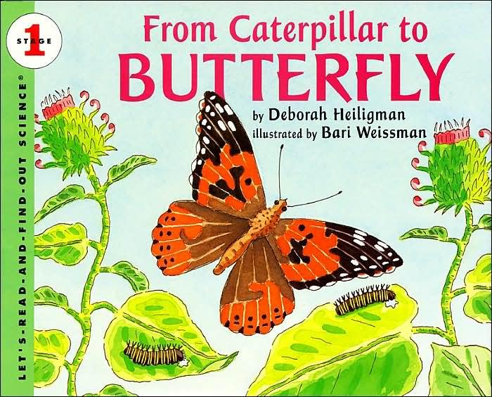 Butterfly Garden Book for Monarchs